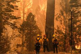 ¿Son los economistas culpables de la inacción climática?