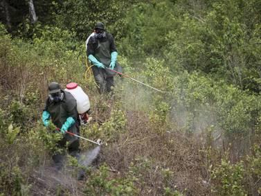 Las tres claves de la nueva estrategia antidrogas estadounidense en Colombia