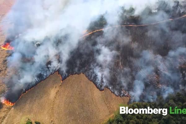 ¿Cómo el clima extremo afecta a Brasil?