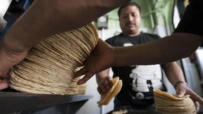 Las tortillas serán más caras mientras Gruma mitiga los costos del maíz